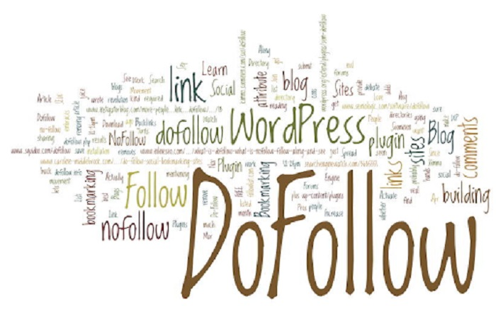 Link dofollow có vai trò rất quan trọng trong quá trình giúp Google có thể đánh giá cao về website