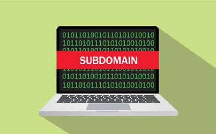 Sử dụng subdomain để tách những Module khỏi trang web chính là việc không hiếm gặp hiện nay